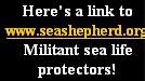 Here's a link to www.seashepherd.org